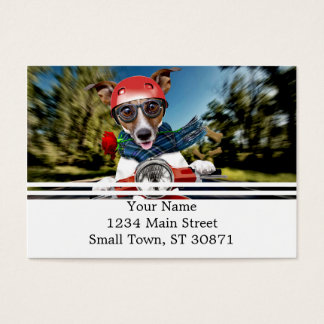 Scooter dog ,jack russell business card