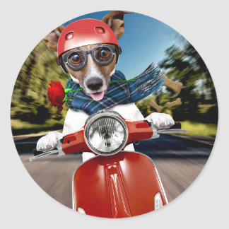 Scooter dog ,jack russell classic round sticker