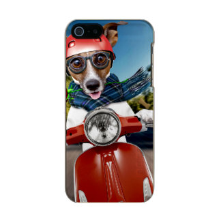 Scooter dog ,jack russell incipio feather® shine iPhone 5 case