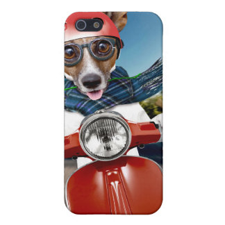 Scooter dog ,jack russell iPhone 5/5S cover