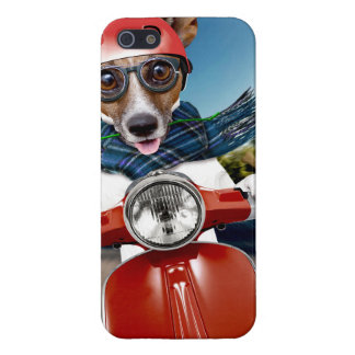 Scooter dog ,jack russell iPhone 5 cover