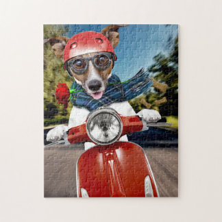 Scooter dog ,jack russell jigsaw puzzle