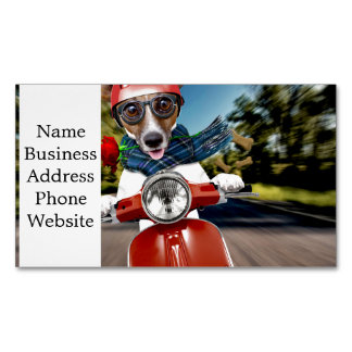 Scooter dog ,jack russell Magnetic business card