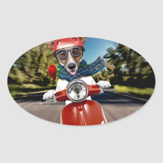 Scooter dog ,jack russell oval sticker