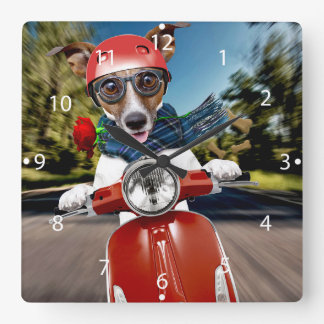 Scooter dog ,jack russell square wall clock