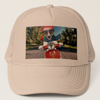 Scooter dog ,jack russell trucker hat