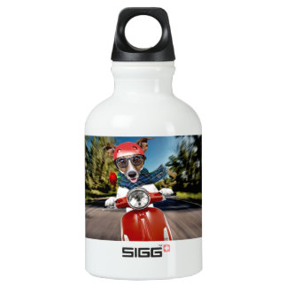 Scooter dog ,jack russell water bottle