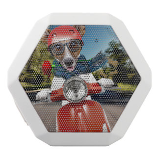 Scooter dog ,jack russell white bluetooth speaker