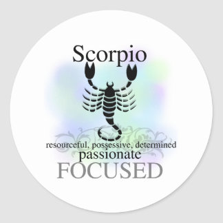 Scorpio About You Classic Round Sticker