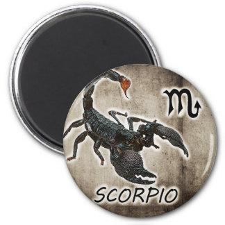 scorpio astrology 2017 2 inch round magnet
