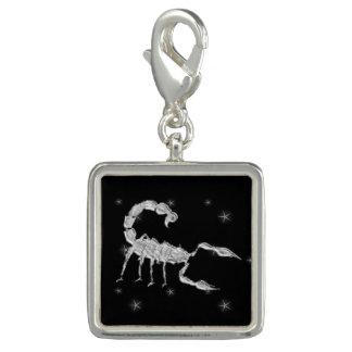 Scorpio Scorpion Zodiac Design Black Charm