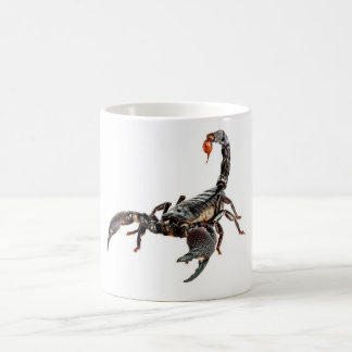 Scorpion. Coffee Mug