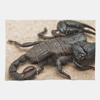 Scorpion Kitchen Towel