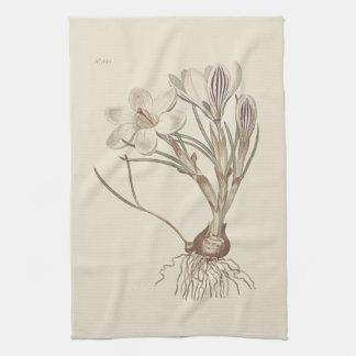 Scotch Crocus Botanical Illustration Kitchen Towel