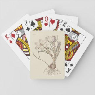 Scotch Crocus Botanical Illustration Poker Deck