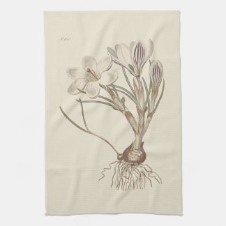 Scotch Crocus Botanical Illustration Towel