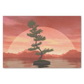 Scotch pine bonsai tree - 3D render Tissue Paper