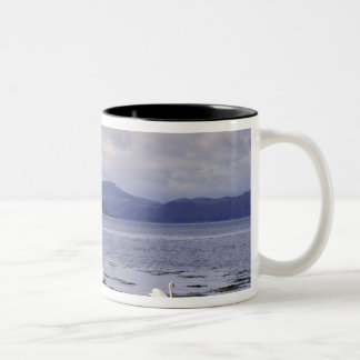Scotland, Highland, Wester Ross, Stalker Two-Tone Coffee Mug