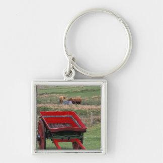 Scotland, Isle of Skye, Kilmuir. Farm animals Keychain