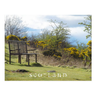 Scotland - Stirling (Floral Bench) Postcard