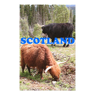 Scotland: two highland cattle stationery design