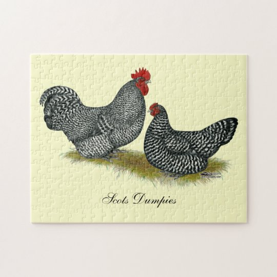 Scots Dumpy Chickens Jigsaw Puzzle