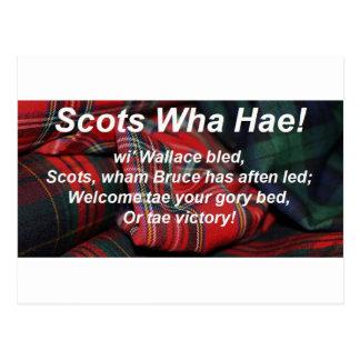 Scots Wha Hae-Tartan Postcard