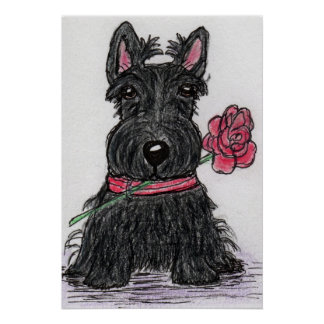 Scottie Dog Rose Poster Birthday Christmas