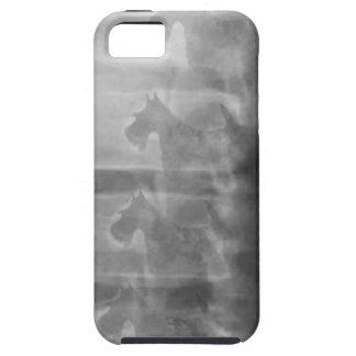 scottie dog syndrome iPhone 5 case