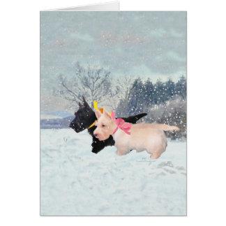 Scottie Pups Card