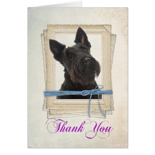 Scottie Thank You Card