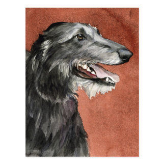 Scottish Deerhound Dog Art Postcard