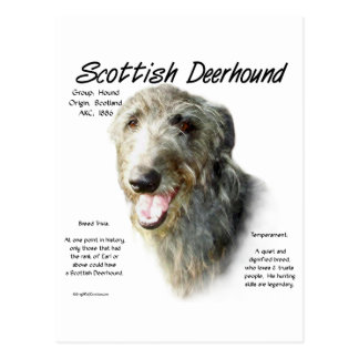 Scottish Deerhound History Design Postcard