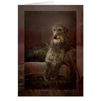 Scottish deerhound one has sofa card