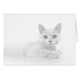 Scottish Fold Kitten Cat Super Cute Card
