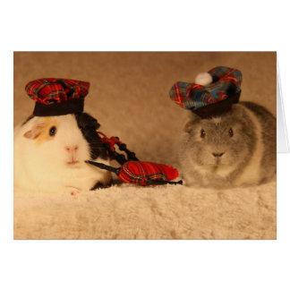 Scottish Guinea Pigs Card