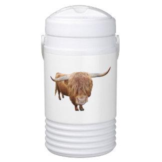 Scottish highland cattle cooler