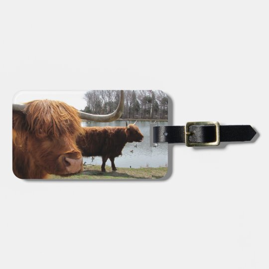Scottish Highland Cattle ~ Luggage Tag