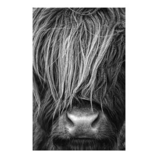 Scottish Highland Cattle - Scotland Personalized Stationery