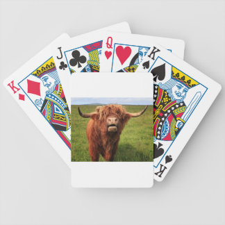 Scottish Highland Cattle - Scotland Poker Deck