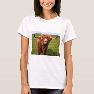 Scottish Highland Cattle - Scotland T-Shirt
