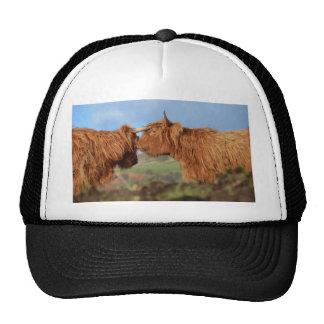 Scottish Highland Cattle Trucker Hat