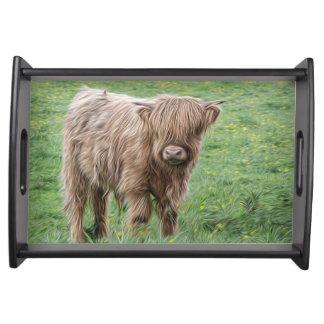 Scottish Highland cow photograph tray