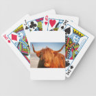 Scottish Highland Cow - Scotland Bicycle Playing Cards