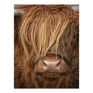 Scottish Highland Cow - Scotland Letterhead Template