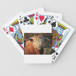 Scottish Highland Cow - Scotland Poker Deck