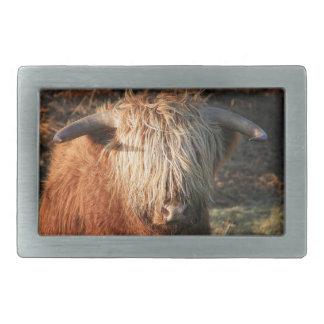 Scottish Highland Cow - Scotland Rectangular Belt Buckles