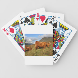 Scottish Highland Cows - Scotland Bicycle Playing Cards