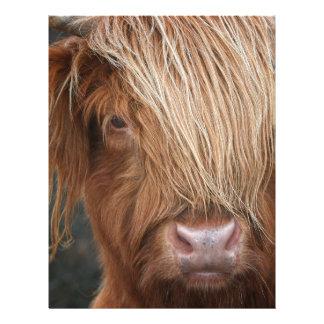 Scottish Highland Cows - Scotland Custom Letterhead