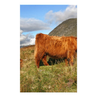 Scottish Highland Cows - Scotland Customized Stationery